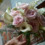 Calle e Rose