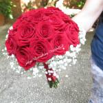 rose gipsofila